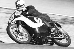 Ted Havens-Westwood-Hairpin-G50